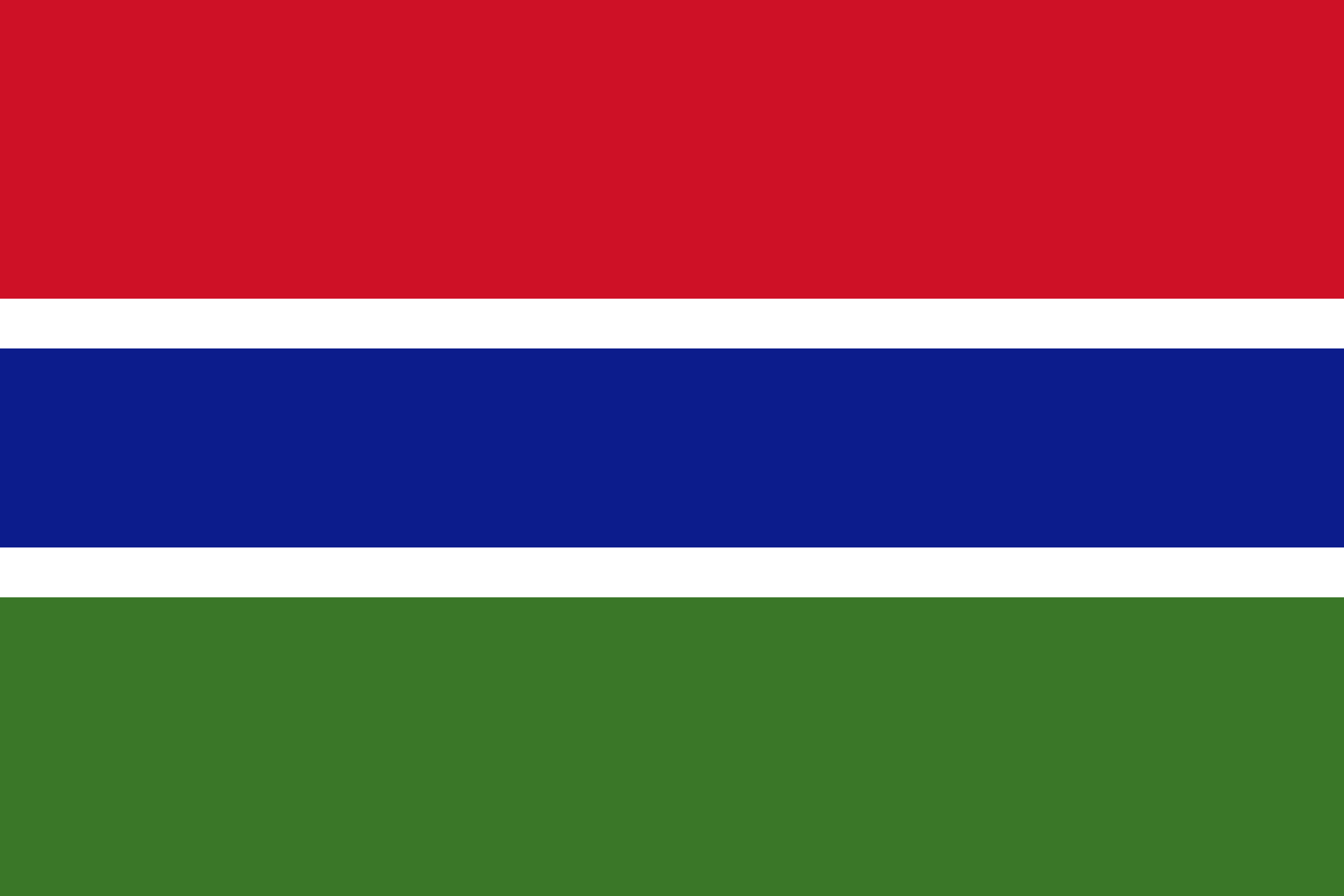 Gambia ratifies the United Nations Convention on Transparency in Treaty-based Investor-State Arbitration